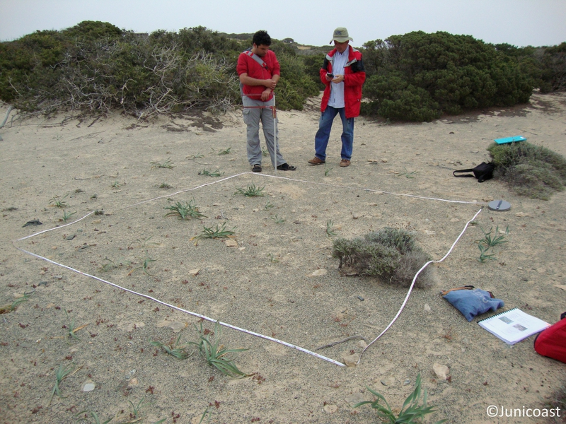 Plot sampling, April 2010